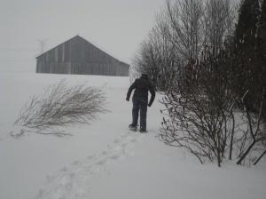 snowshoes3